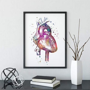 Anatomical Heart Watercolor Print - PrintsFinds