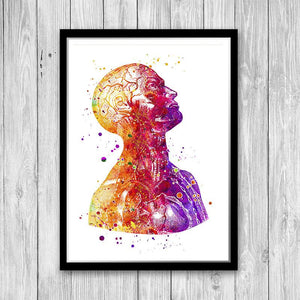 Anatomical Print Neuroscience Art poster - PrintsFinds
