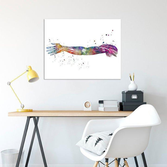 Arm Muscles Human Anatomy Art Watercolor Print