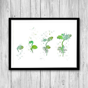 Biology Art Classroom Decor Germination Watercolor Print - PrintsFinds