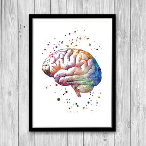 Brain Anatomy Art Print, Neuroscience Art Poster - PrintsFinds