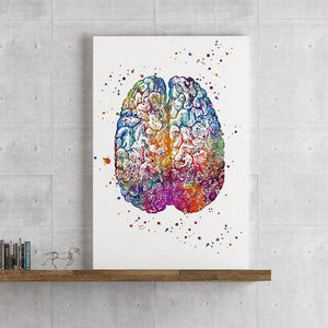 Brain Anatomy Watercolor print - PrintsFinds