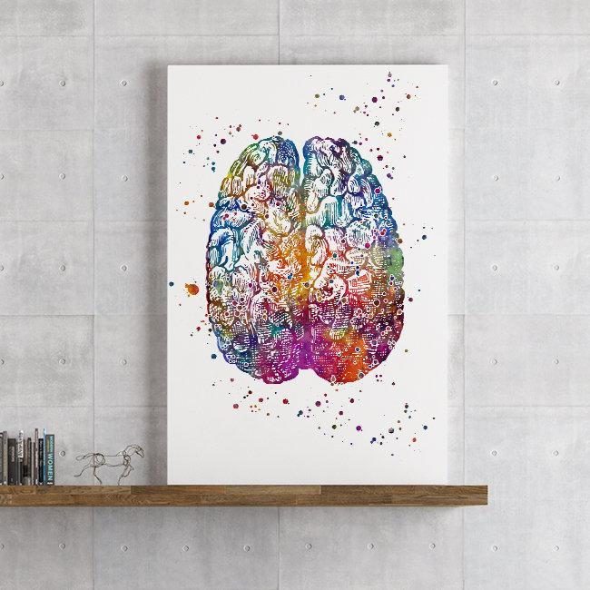 Brain Anatomy Watercolor print