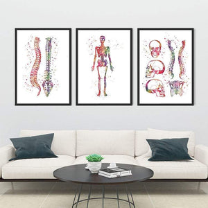 Chiropractic Clinic Wall Decor Set of 3 Prints - PrintsFinds