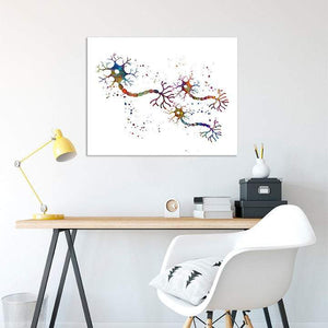 Connexion Of Neurons Nerve Impulse - PrintsFinds