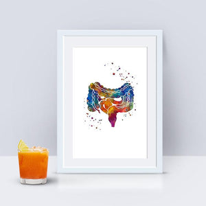 Digestive System Art Large and Small Intestine Gi Tract - PrintsFinds