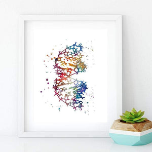 DNA Art Set of 3 Watercolor Prints A, B and Z forms of DNA - PrintsFinds