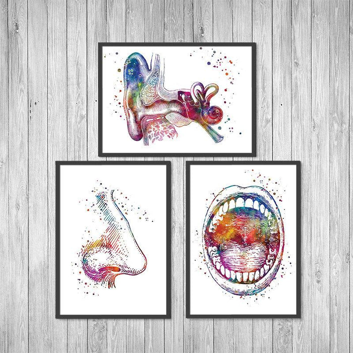 Ear Nose and Throat Watercolor Prints set of 3