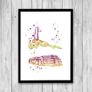 Foot and Ankle Watercolor Print, Physical Therapist gift - PrintsFinds