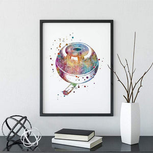 Human Eye Anatomy Art Print - PrintsFinds