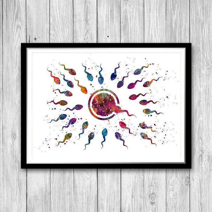 Human Fertilization Egg and Sperm Watercolor Art Print