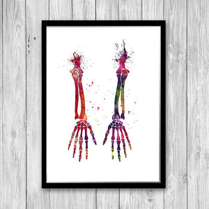 Human Hands Bones Anatomy art print - PrintsFinds