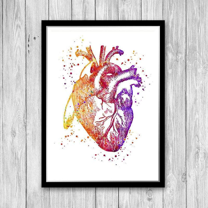 Human Heart Anatomy art print