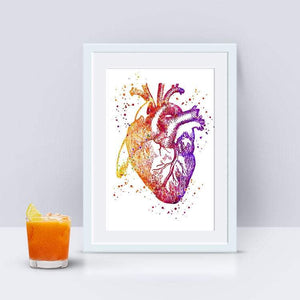 Human Heart Anatomy art print - PrintsFinds