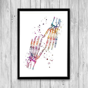 Human Palm Bones Anatomy Art - PrintsFinds