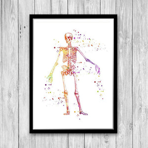 Human Skeleton Anatomy Art - PrintsFinds