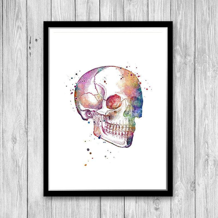 Human Skull watercolor print