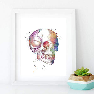 Human Skull watercolor print - PrintsFinds