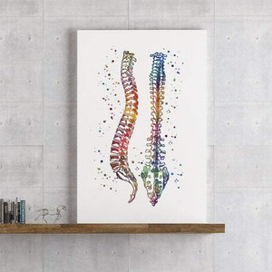Human Spine Print, Wall Art for Chiropractor Office - PrintsFinds