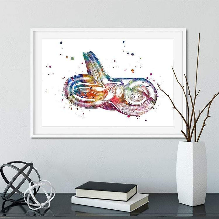 Inner Ear Watercolor Print