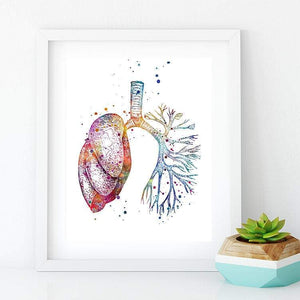 Lung Anatomy Watercolor Print - PrintsFinds