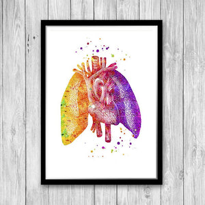 Lungs And Heart, Human Anatomy art - PrintsFinds