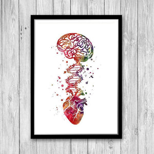 Medical Art Brain Heart DNA Watercolor Print - PrintsFinds