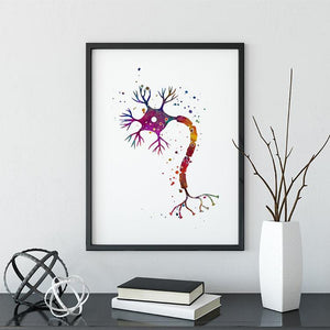 Nerve Cell Watercolor Print - PrintsFinds