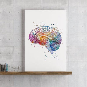 Neuroanatomy Art Brain Cross Section - PrintsFinds