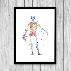Skeleton Print, Chiropractor Office decor - PrintsFinds