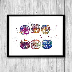 Surface of Molar Watercolor print - PrintsFinds