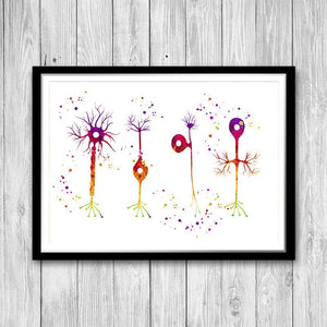 Types of Neurons - PrintsFinds