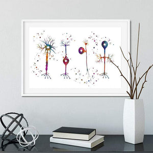 Types of Neurons Watercolor Print - PrintsFinds