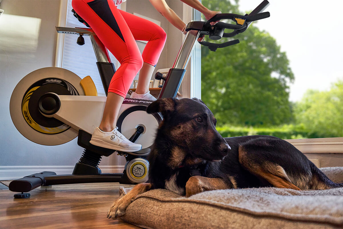 Dog hanging out with Lady indoor cycling with white Shimano IC300 Indoor Cycling Shoes