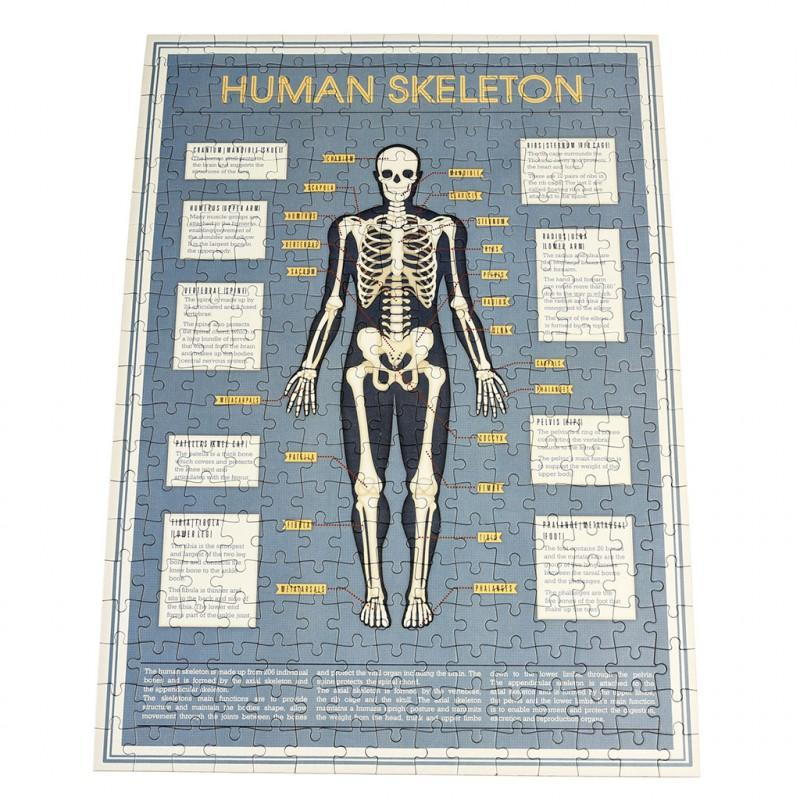 Rex London - Anatomical Skeleton Puzzle In A Tube - 28202- The Original Party Bag Company