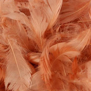 Luxury Rose Gold Feathers XL Pack