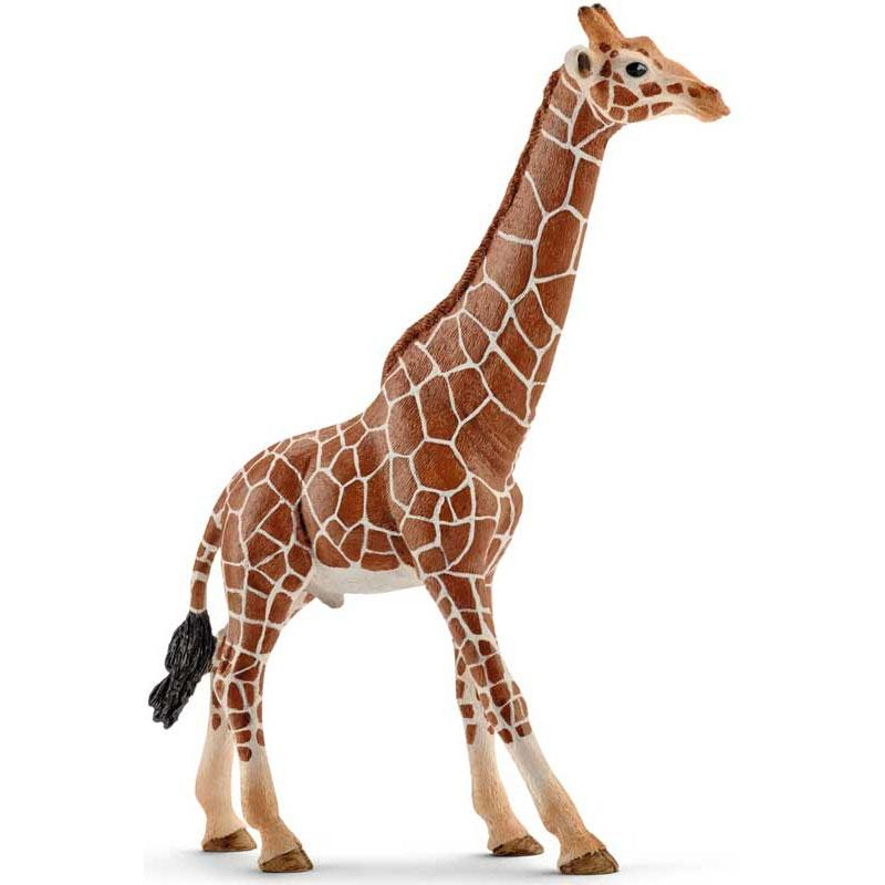 Schleich - Giraffe Male - 14749- The Original Party Bag Company