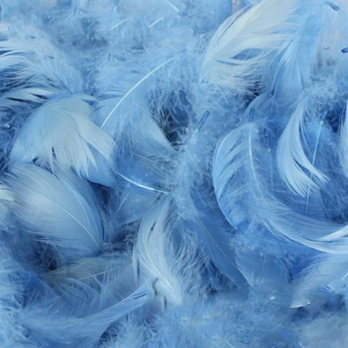 The Original Party Bag Company - Pack of Baby Blue Feathers (150) - featherbabyblue- The Original Party Bag Company