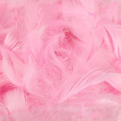 The Original Party Bag Company - Pack of Pale Pink Feathers (150) - featherpalepink- The Original Party Bag Company