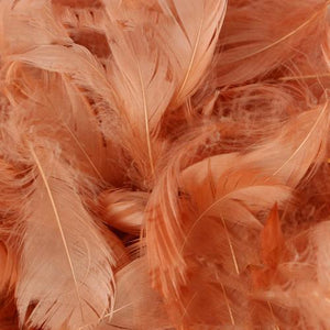 The Original Party Bag Company - Pack of Rose Gold Feathers (150) - featherrosegold- The Original Party Bag Company