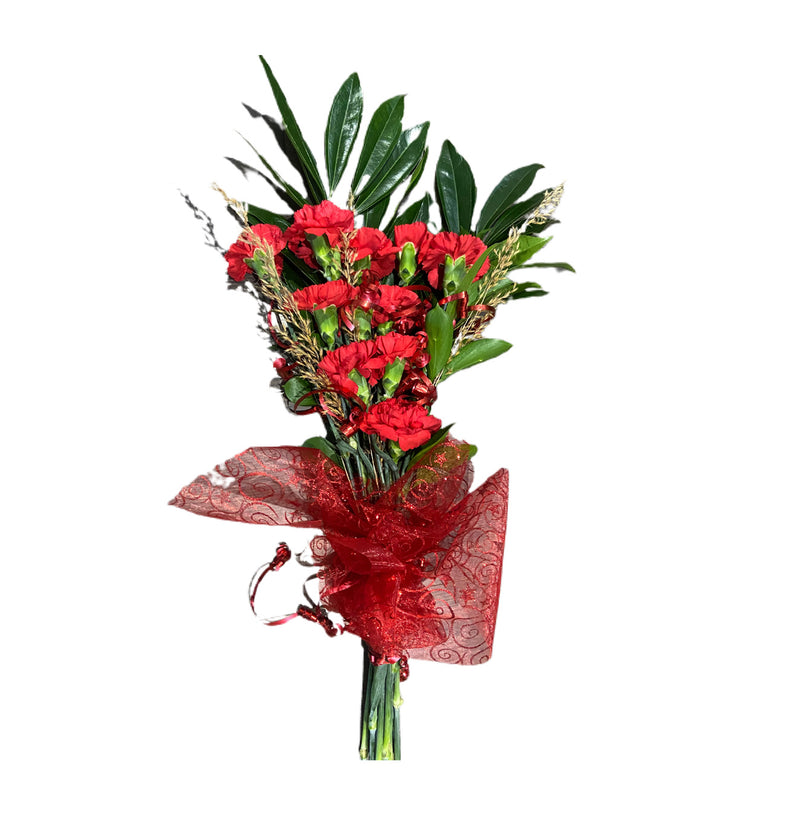 Order Carnation bouquet, flower delivery Ottawa Gift Shop