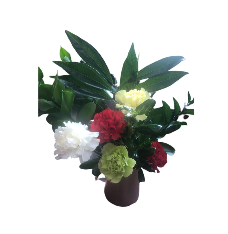 Carnation lovers flower arrangement, Ottawa flower delivery