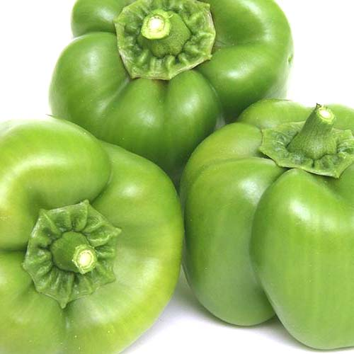 Green Peppers (each)