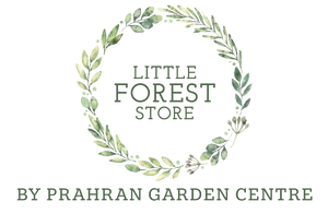 Little Forest S