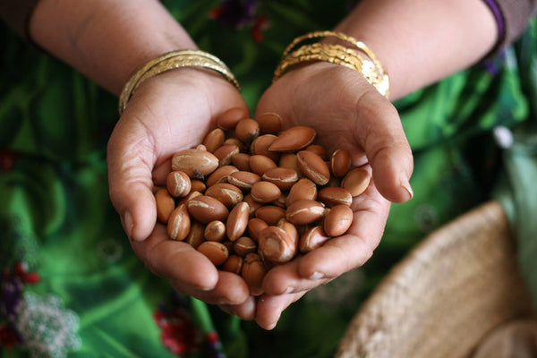 How Argan Oil Transforms Lives