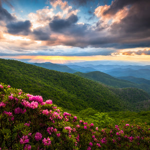 Load image into Gallery viewer, NC Mountains