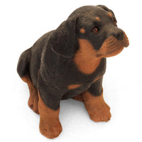 "Life-like Rottweiler Figurine ""Awaiting Treats"" 5.5 in. Puppy Sitting 01A - Rottweiler POV"