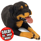 "Mexican Rottweiler Figurine ""Big Head Rottie"" 6.5 in. Adult Laying 01F - Rottweiler POV"