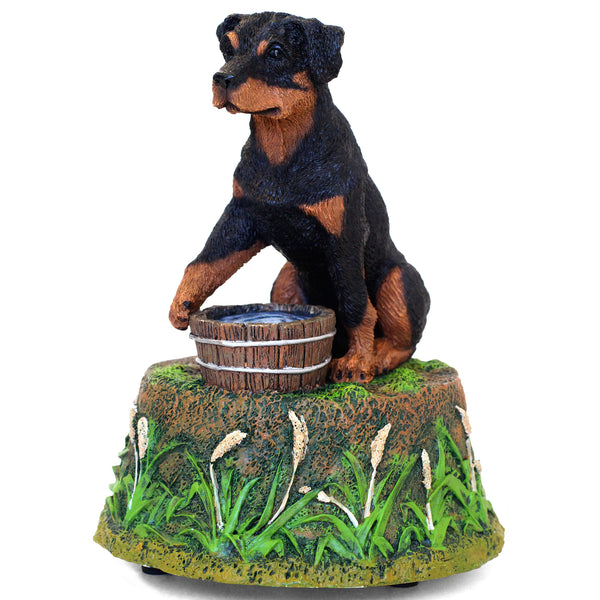 "Rottweiler Music Box Figurine ""Guarding the water bowl"" 5 in. Adult Sitting 01I - Rottweiler POV"