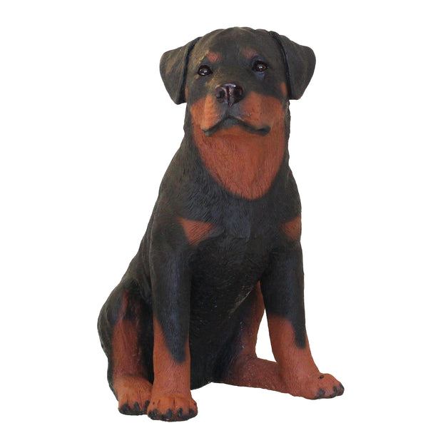 "Large Rottweiler Figurine ""Eagerly Waiting"" 9.5 in. Adult Sitting 12A - Rottweiler POV"